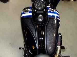 HD Blue Skull