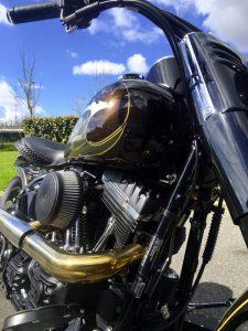 HD Slim Eagle 1950 Borie